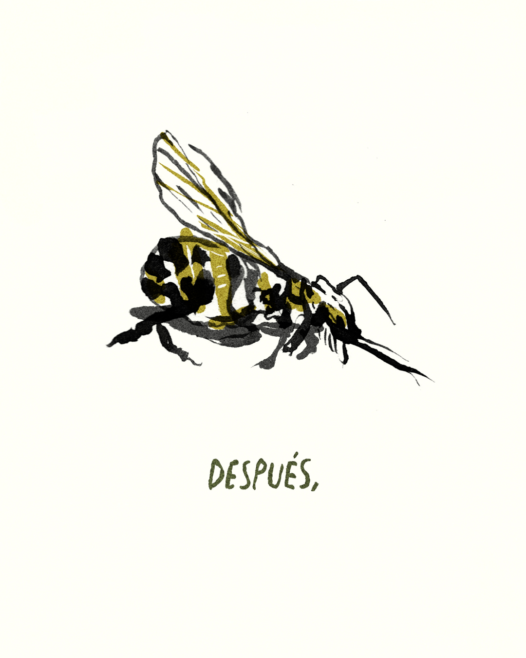 para las abejas 5.jpg