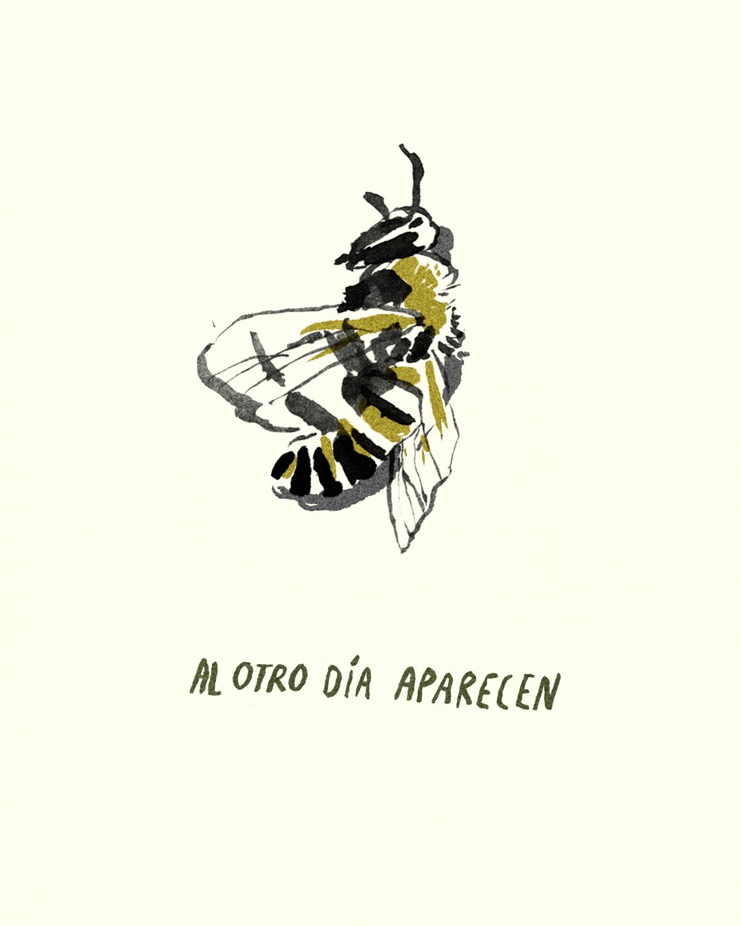 para las abejas 6.jpg