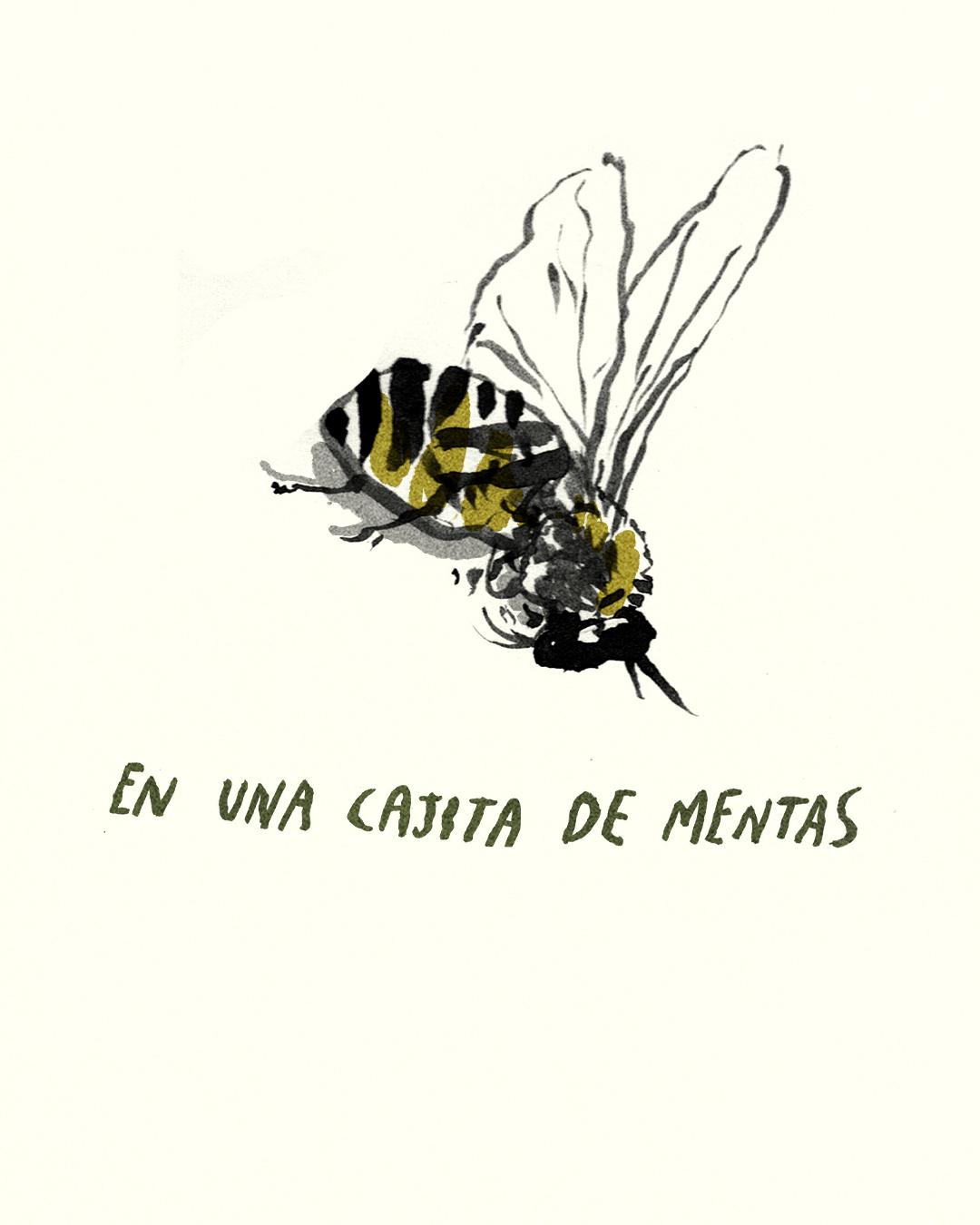 para las abejas 10.jpg