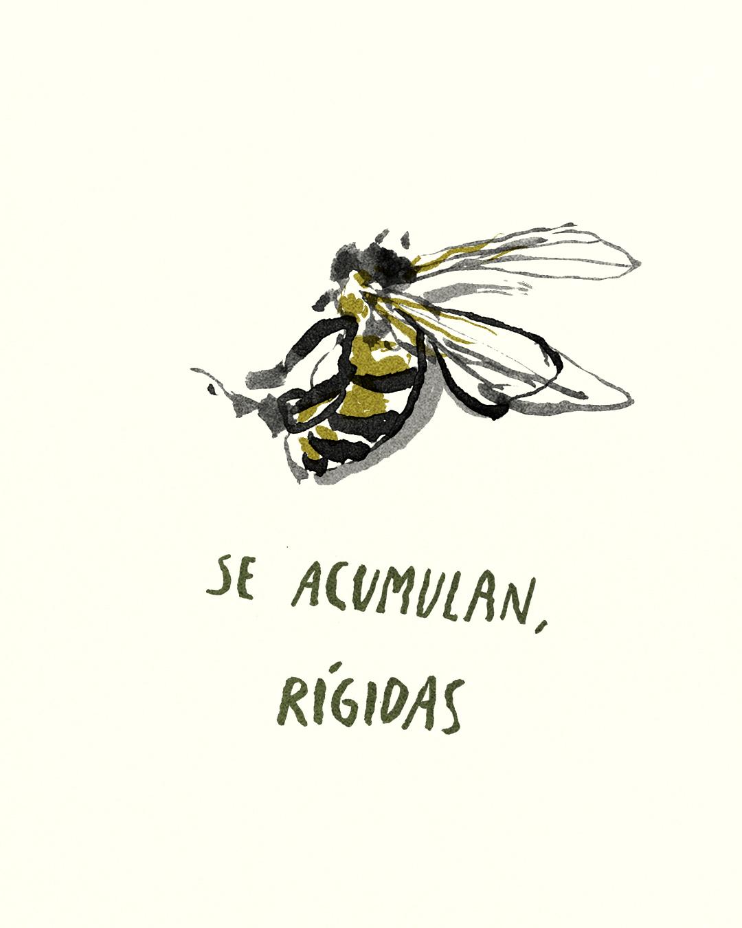 para las abejas 11.jpg