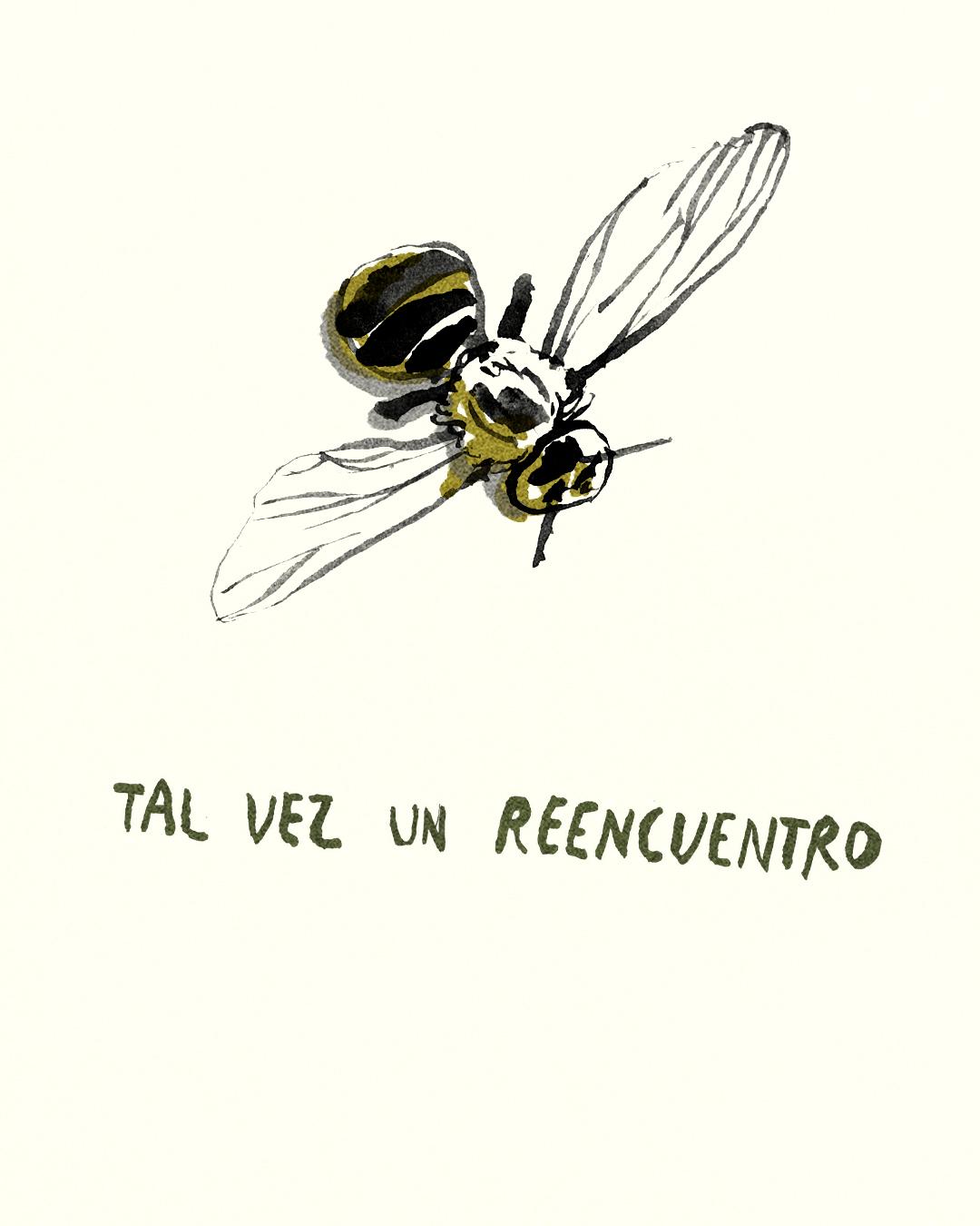 para las abejas 13.jpg