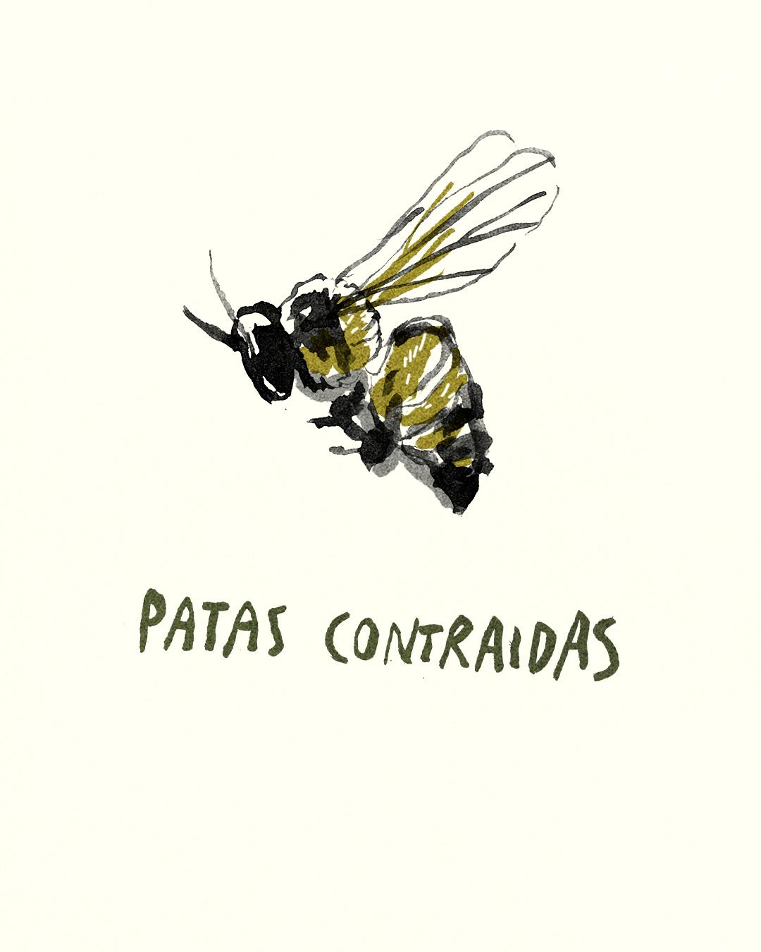 para las abejas 15.jpg