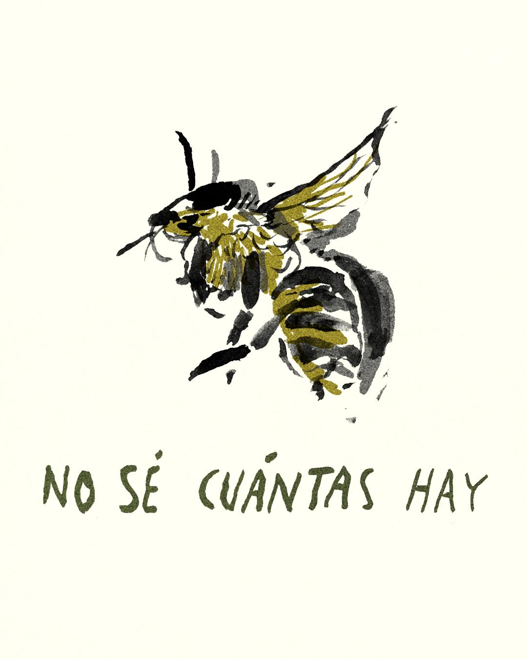 para las abejas 20.jpg