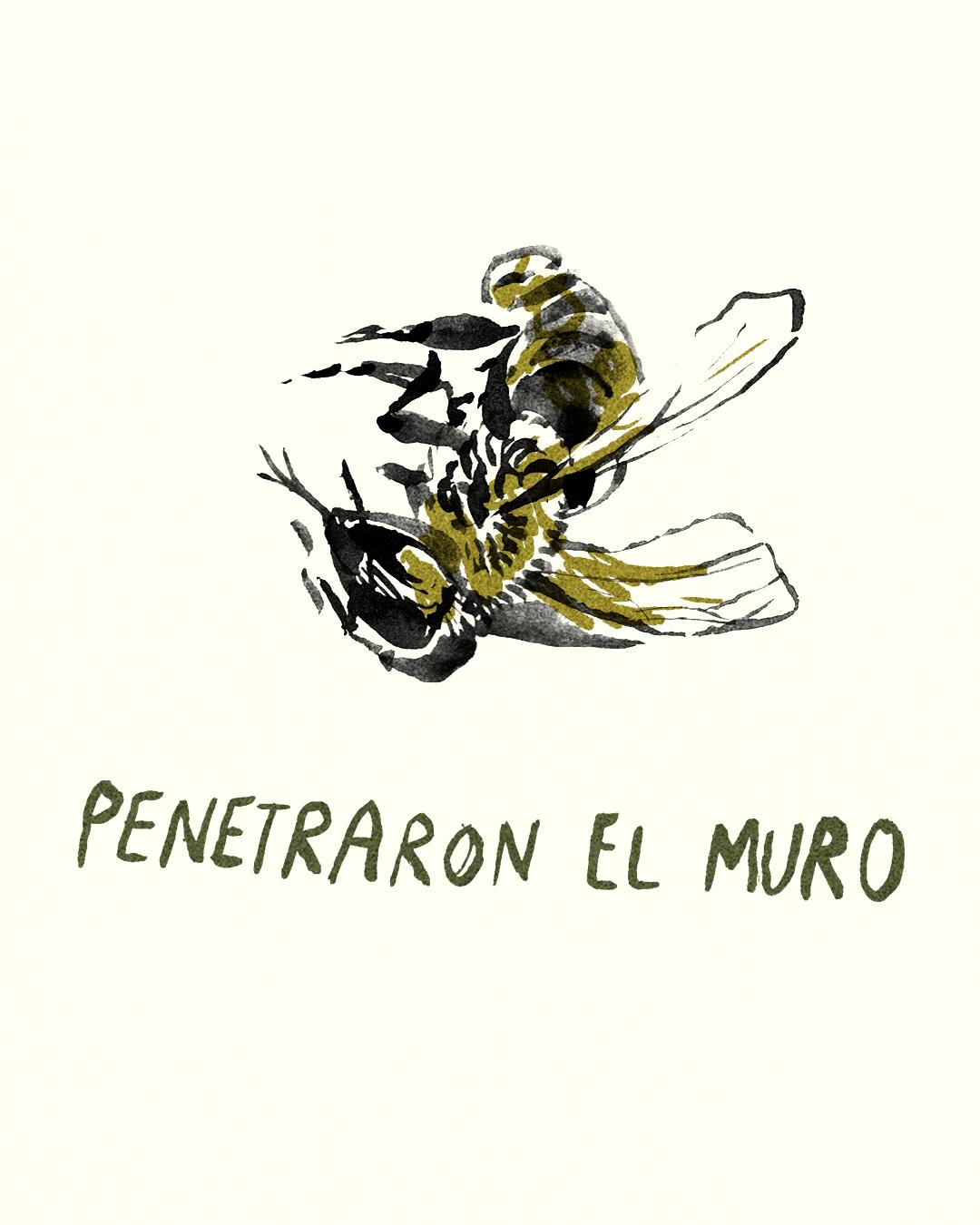 para las abejas 22.jpg