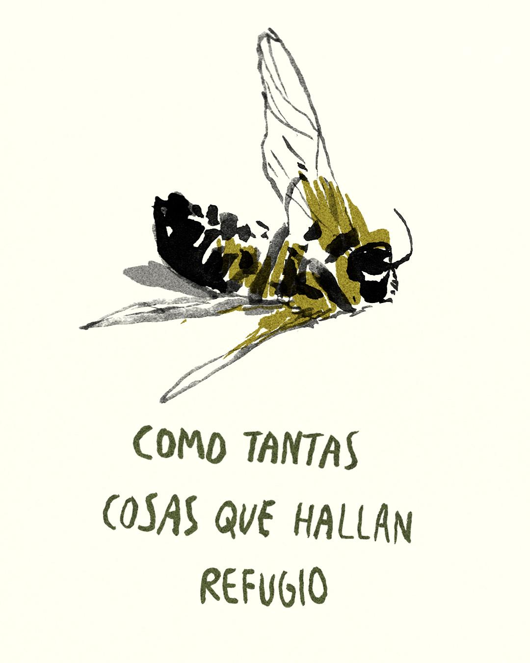 para las abejas 24.jpg