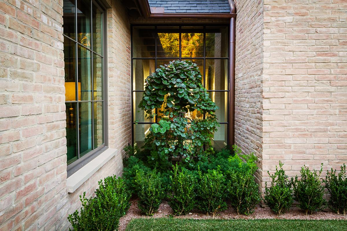 Garden-Design-Studio-Westlake-Hills-008.jpg