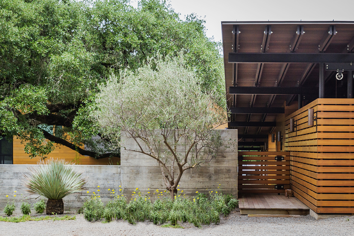Garden-Design-Studio-Austin-Greenshores-01.jpg