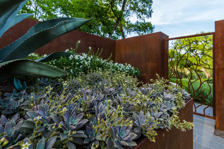 Garden-Design-Studio-Westlake-Hills-01.jpg