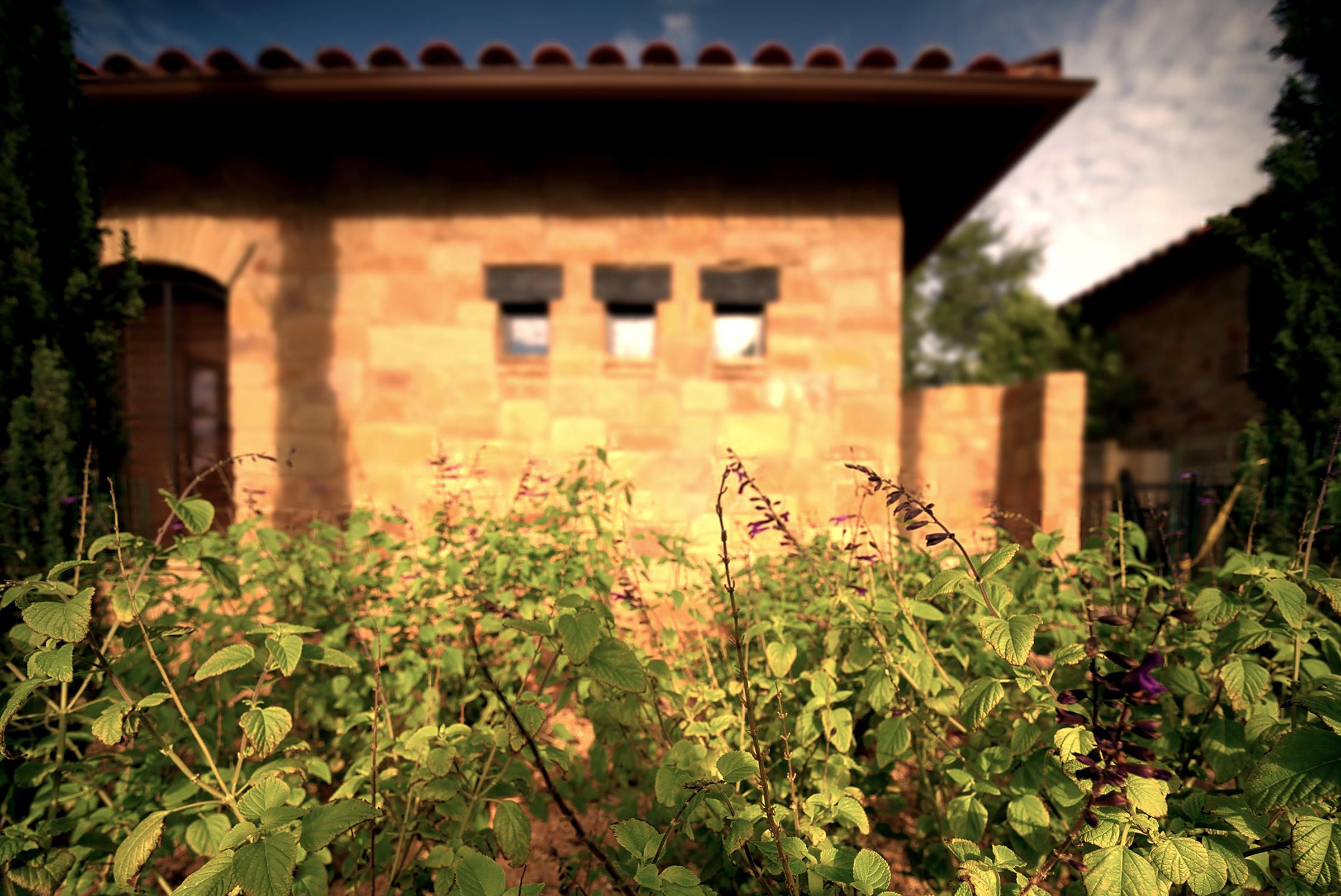 4-07-LS Courtyard.jpg