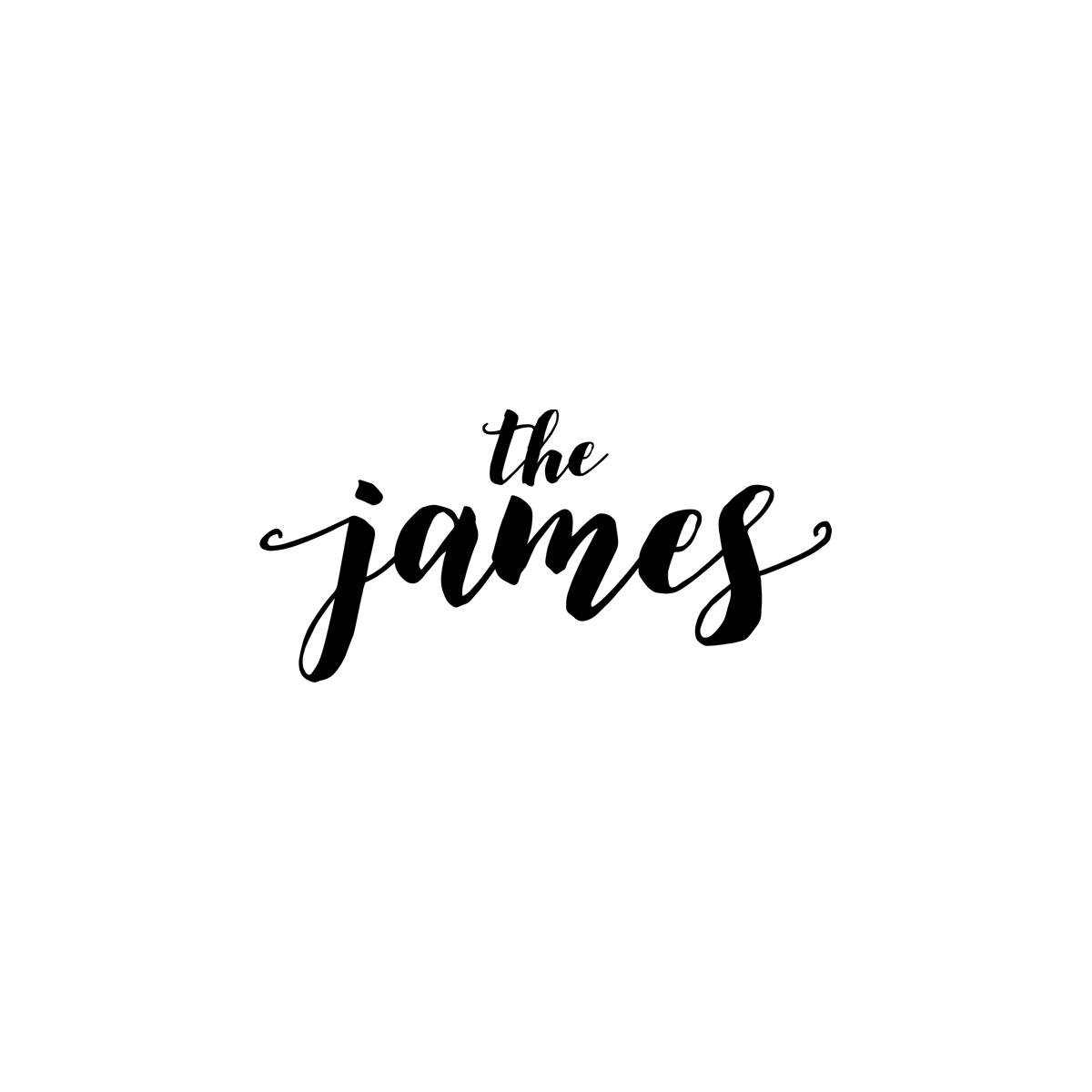 the-james-salon-spa-boutique-mi-logo.jpg