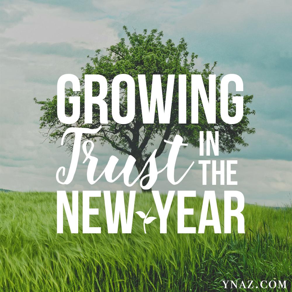 growing-trust.jpg