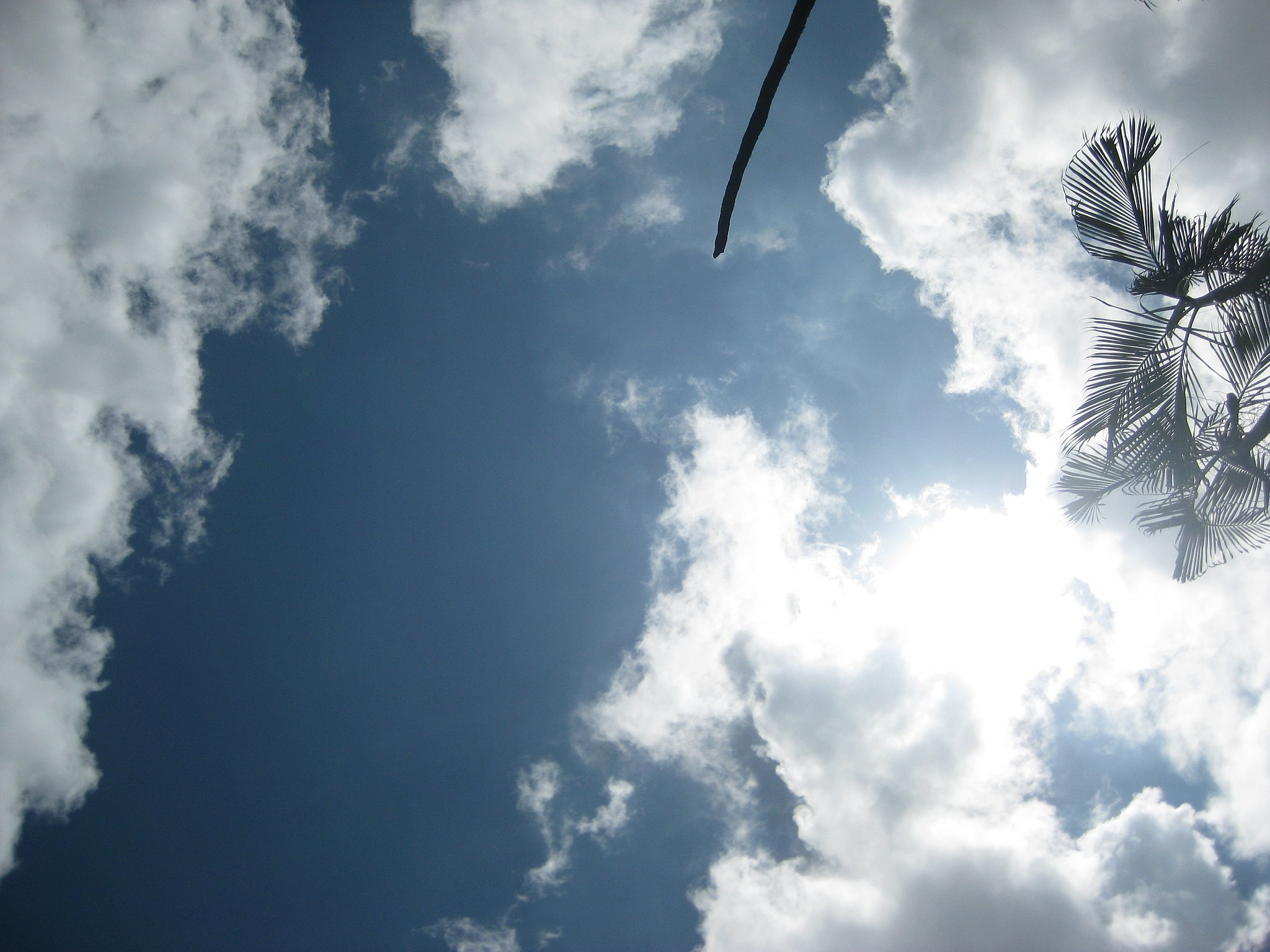 Clear Sky in Mymensingh, August, 2014     by Ibrahim Husain Meraj (Creative Commons)