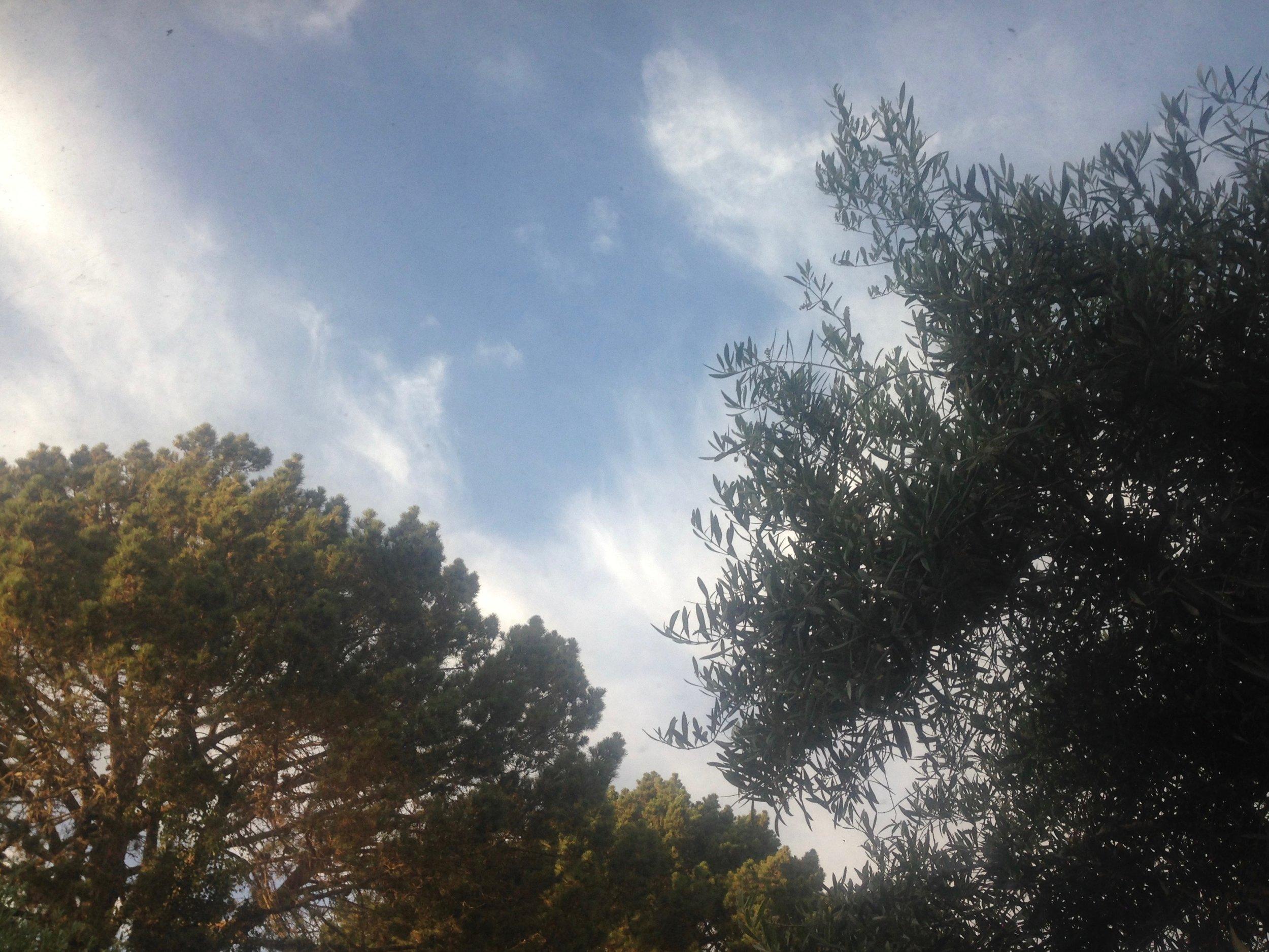 2019-07-30 Circles In The Sky.jpg