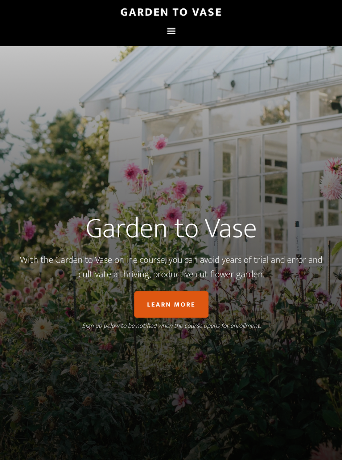 owner and creator - owner and creator of garden to vase, an online course teaching aspiring flower growers from around the world how to grow spectacular cut flowers