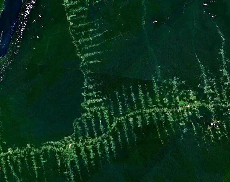Amazonie_deforestation CC licensed.jpg