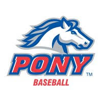 pony baseball.jpeg