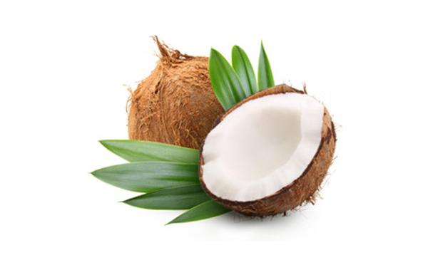 ココナッツオイル※