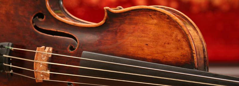 violin2-800x290.png