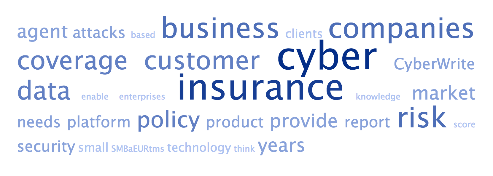 Cyber insurance.png