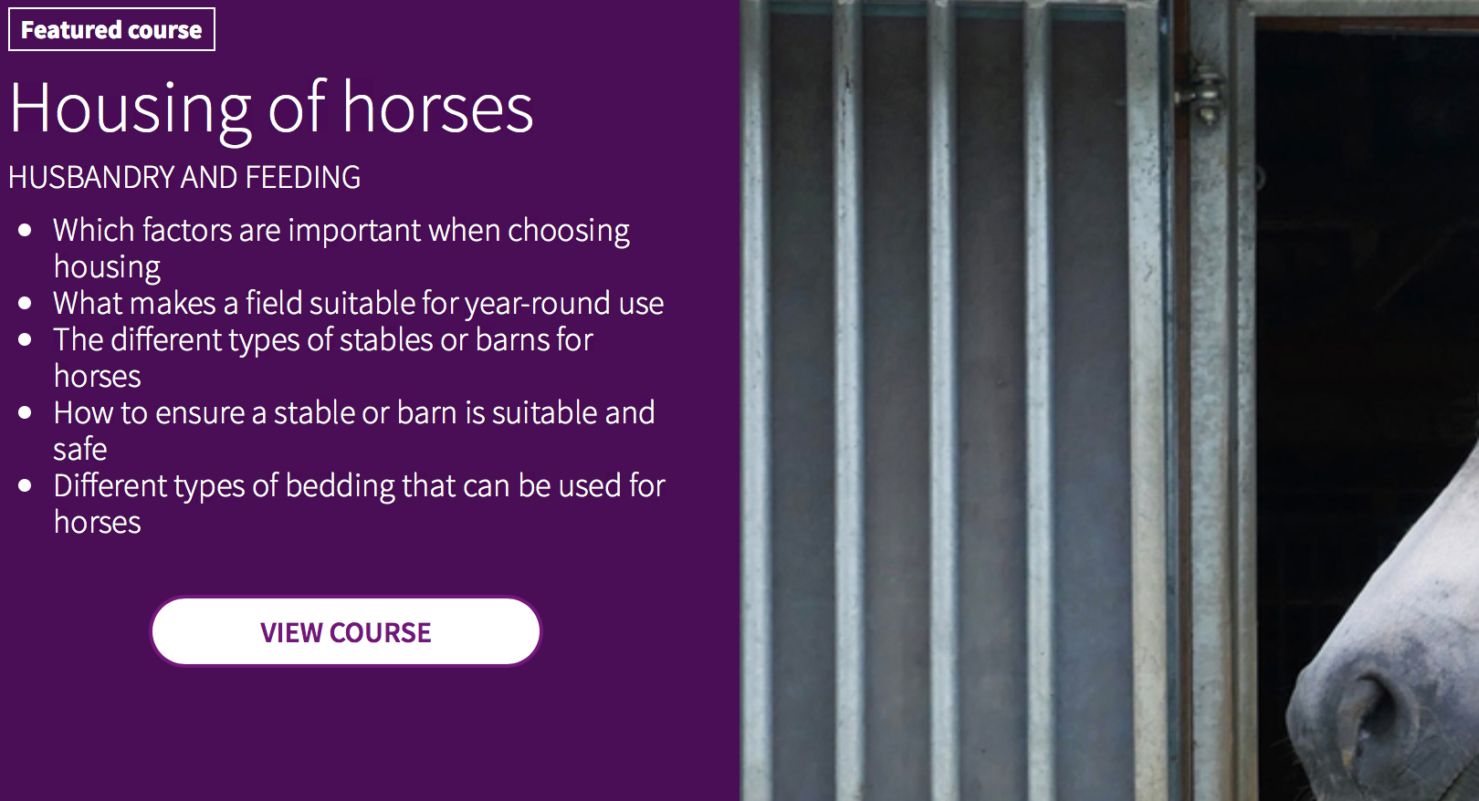 New Courses at the FEI Campus! -