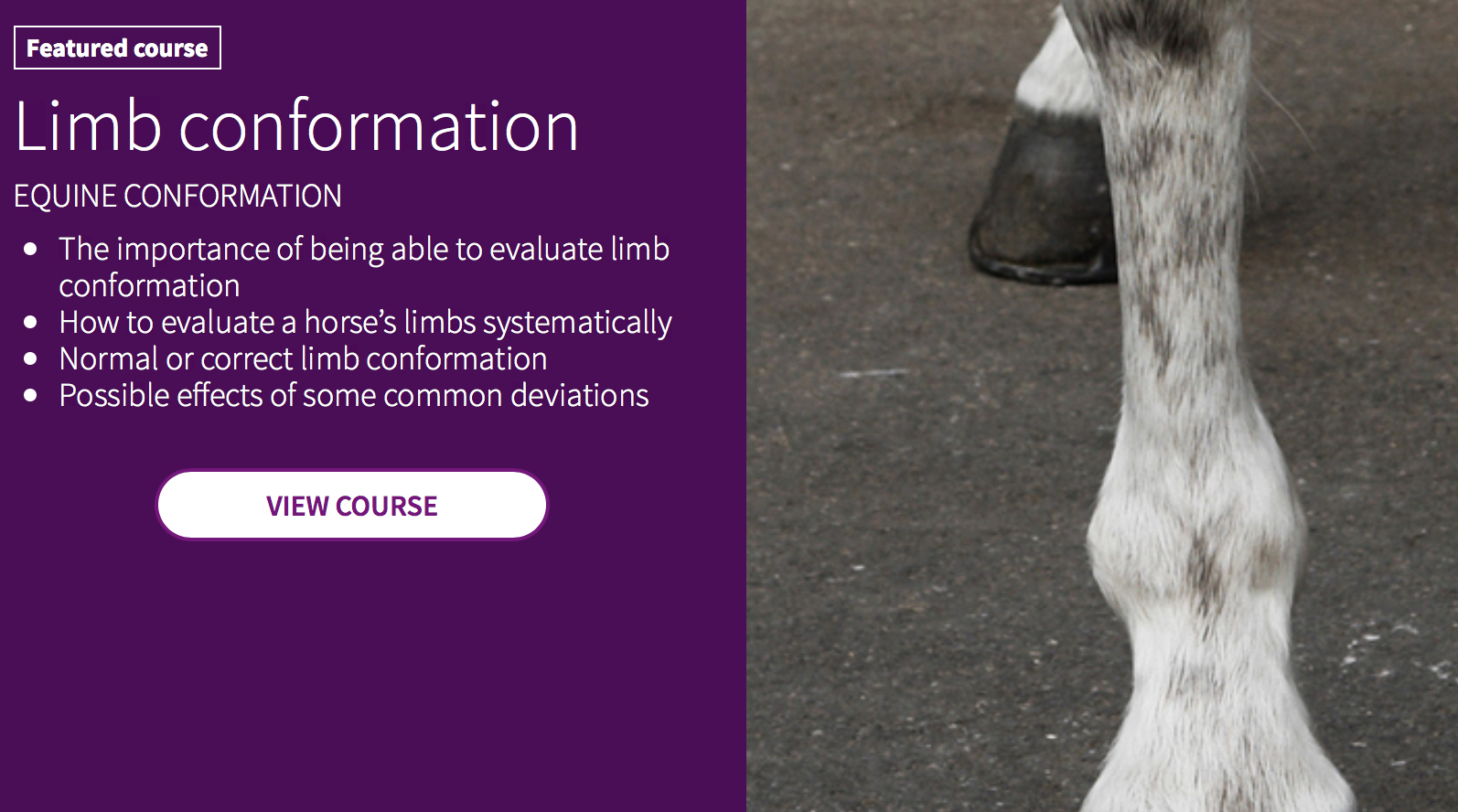 New Course from FEI Campus -