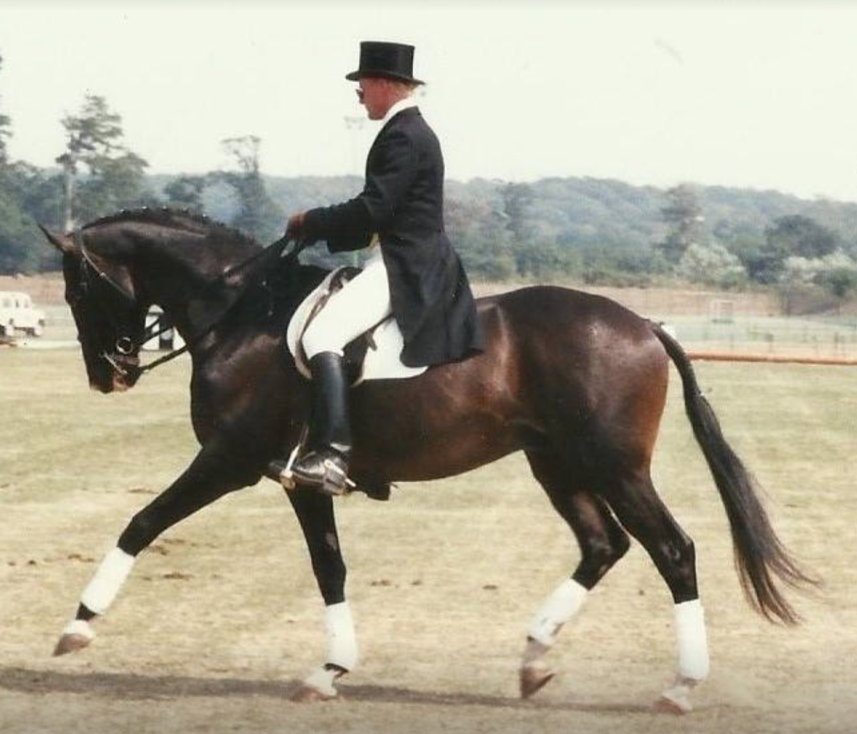 Aart Noordijk BHSI has spent many years training horses and riders of a variety of disciplines.
