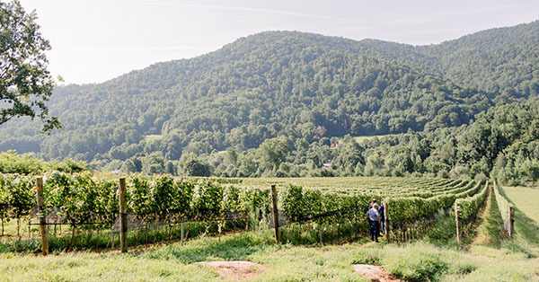 Early Mountain - Quaker Run Vineyard