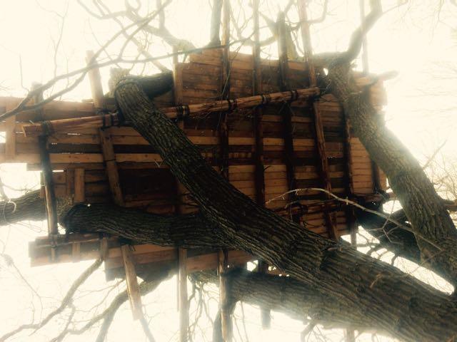 Tree house at Hambacher Forst