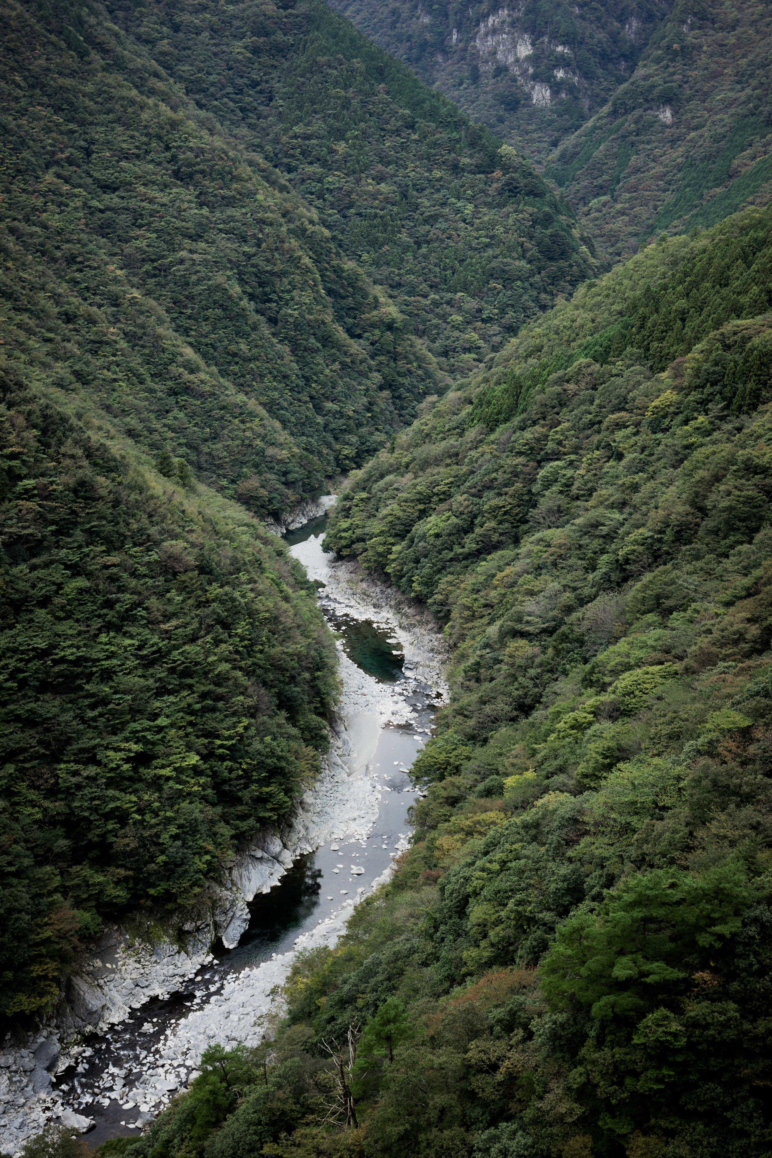 The Iya River
