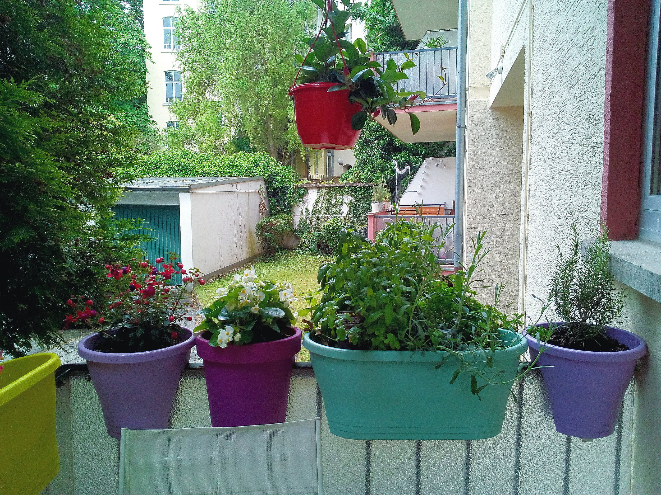 My balcony was a very neglected space already before I moved into my ex-boyfriend's place. But now my mom made it all pretty with lots of colourful pots and flowers so that I have a green oasis that I can enjoy. I love this place now.