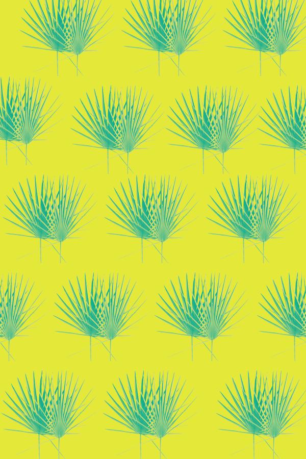 #design #graphicdesign #summerdesign #palmleaf #graphicdesigner #summervibes