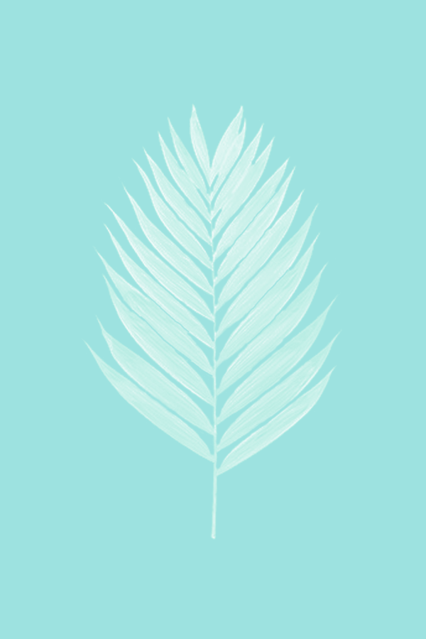 Last Summer Days by Phylleli #design #graphicdesign #turquoise #palmleaf #summerdesign #summergraphics #botanicals #branddesigner #brandstylist #freelancedesigner #thefreelancelife #workwithme #creativity #staycreative #minimalism #minimal #designblog #blogger #illustration
