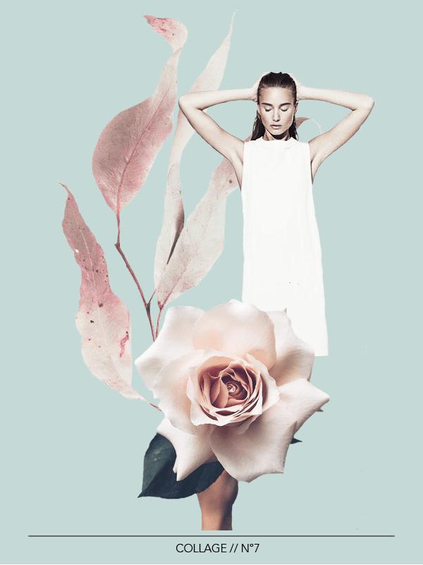Collage No. 7 by Phylleli #design #graphicdesign #minimalism #botanicals #softtones ##7outof60 #freelancedesigner #freelancer #creativity #becreative #inspiration #flower #artdirection