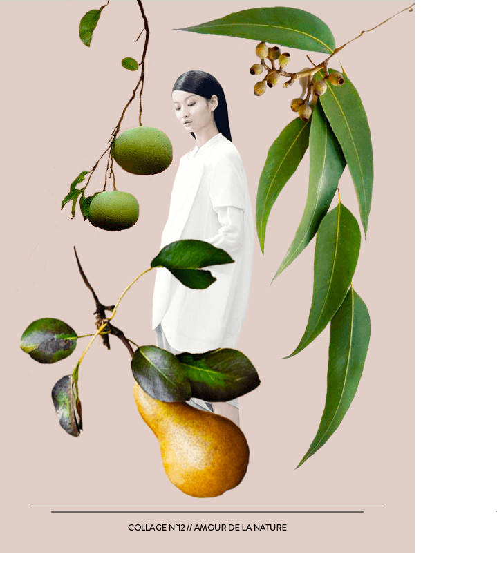 Collage No. 12 // Amour De La Nature by Phylleli #design #graphicdesign #artdirection #collage #thecollageseries #phylleli #editorialdesign #magazinestyle #nature #amourdelanature