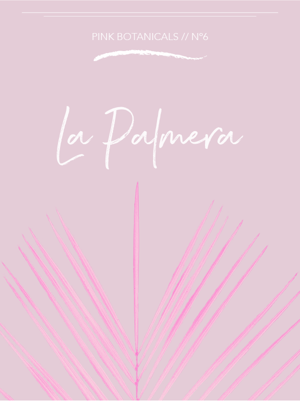 Pink Botanicals // No. 6 by Phylleli #design #pinkbotanicals #graphicdesign #designblog #graphicdesigner #freelancedesigner #sofftones #typography #palmtrees #florida #spain #childhoodmemories #editorialdesign