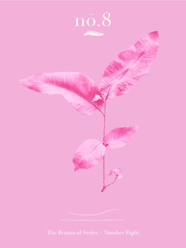 Pink Botanicals No.8 // The Botanical Series #design #graphicdesign #editorialdesign #artdirection #feminine #thinkpink #designer #freelancedesigner #designblog
