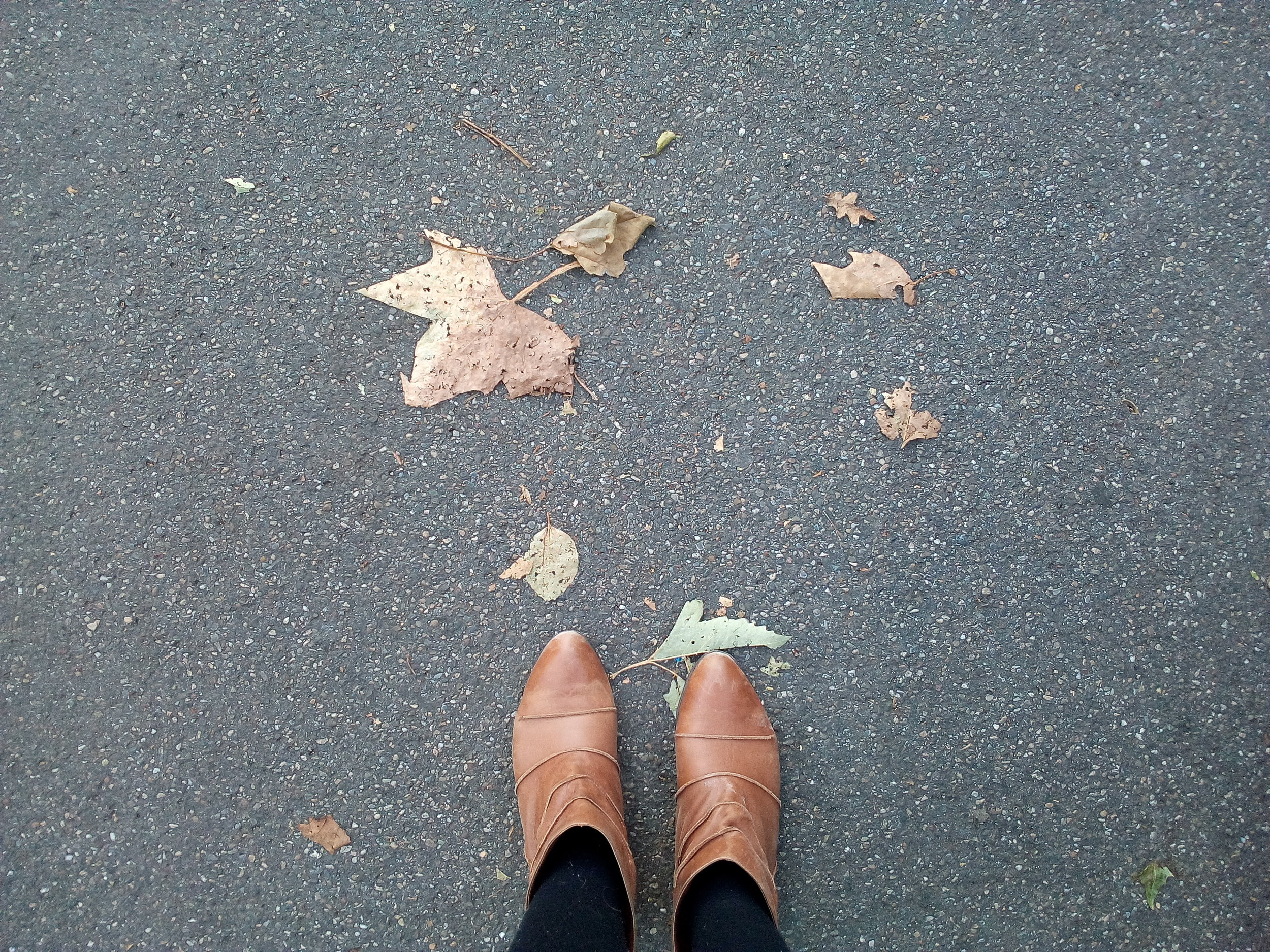 hello Fall! I love these shoes that I bought in Buenos Aires many years ago, they perfectly match with the leaves, right?