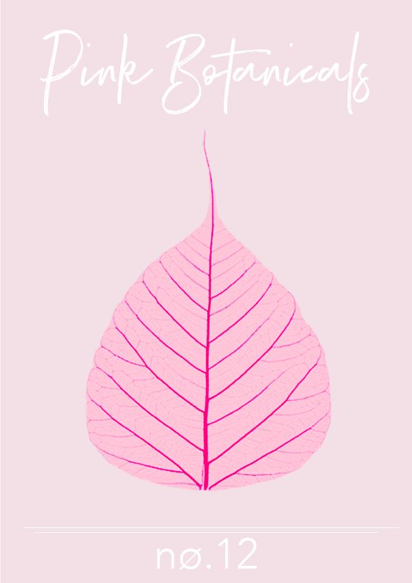 Pink Botanicals No. 12 // Phylleli #design #graphicdesign #pinkbotanicals #designblog #artdirection #editorialdesign #blogger #femininedesign