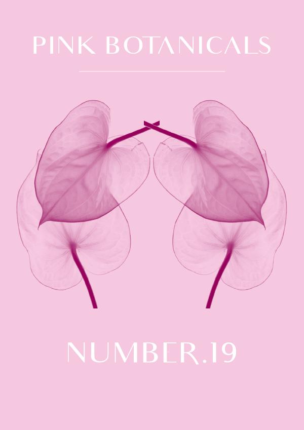 Pink Botanicals // No.19 by Phylleli #designblog #graphicdesign #branding #identitydesign #artdirection #thebotanicalseries #botanicals #typography