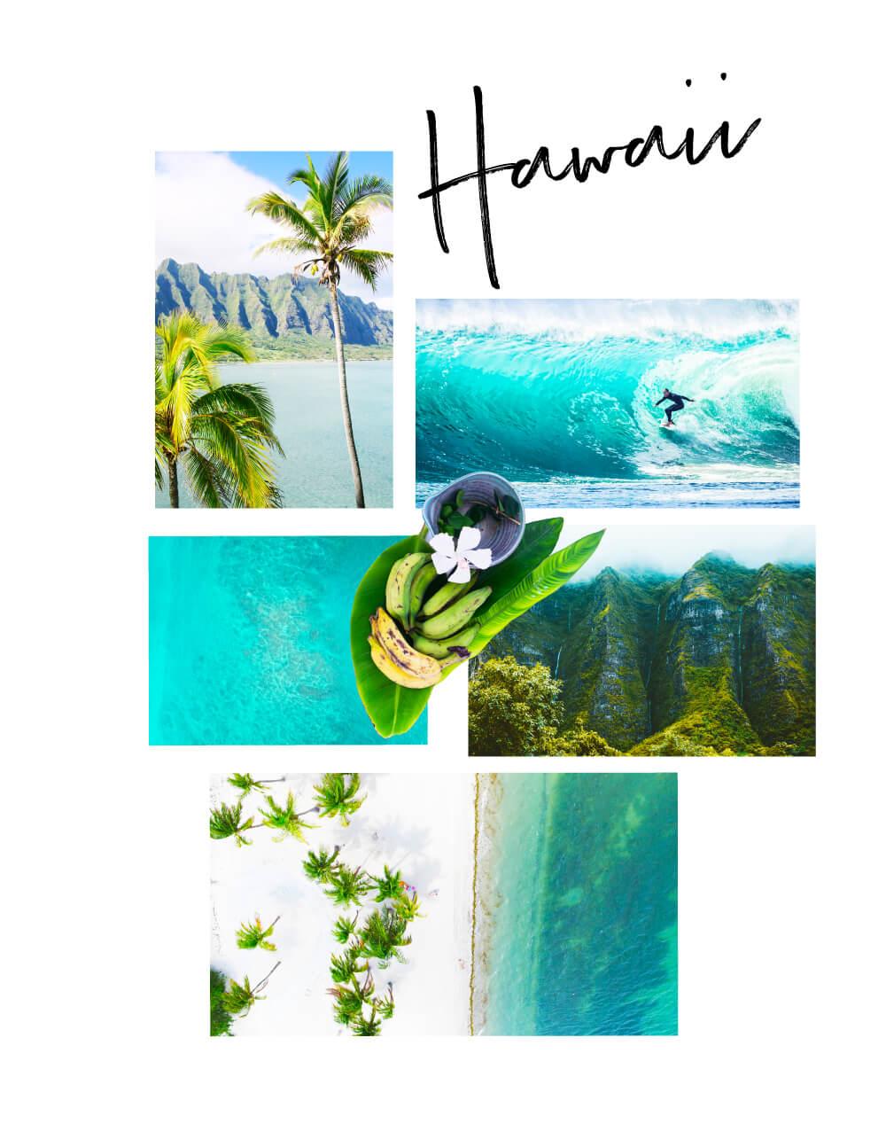 Hawaii Mood Board // Phylleli #moodboard #tropical #hawaii #graphicdesign #wanderlust #designblog