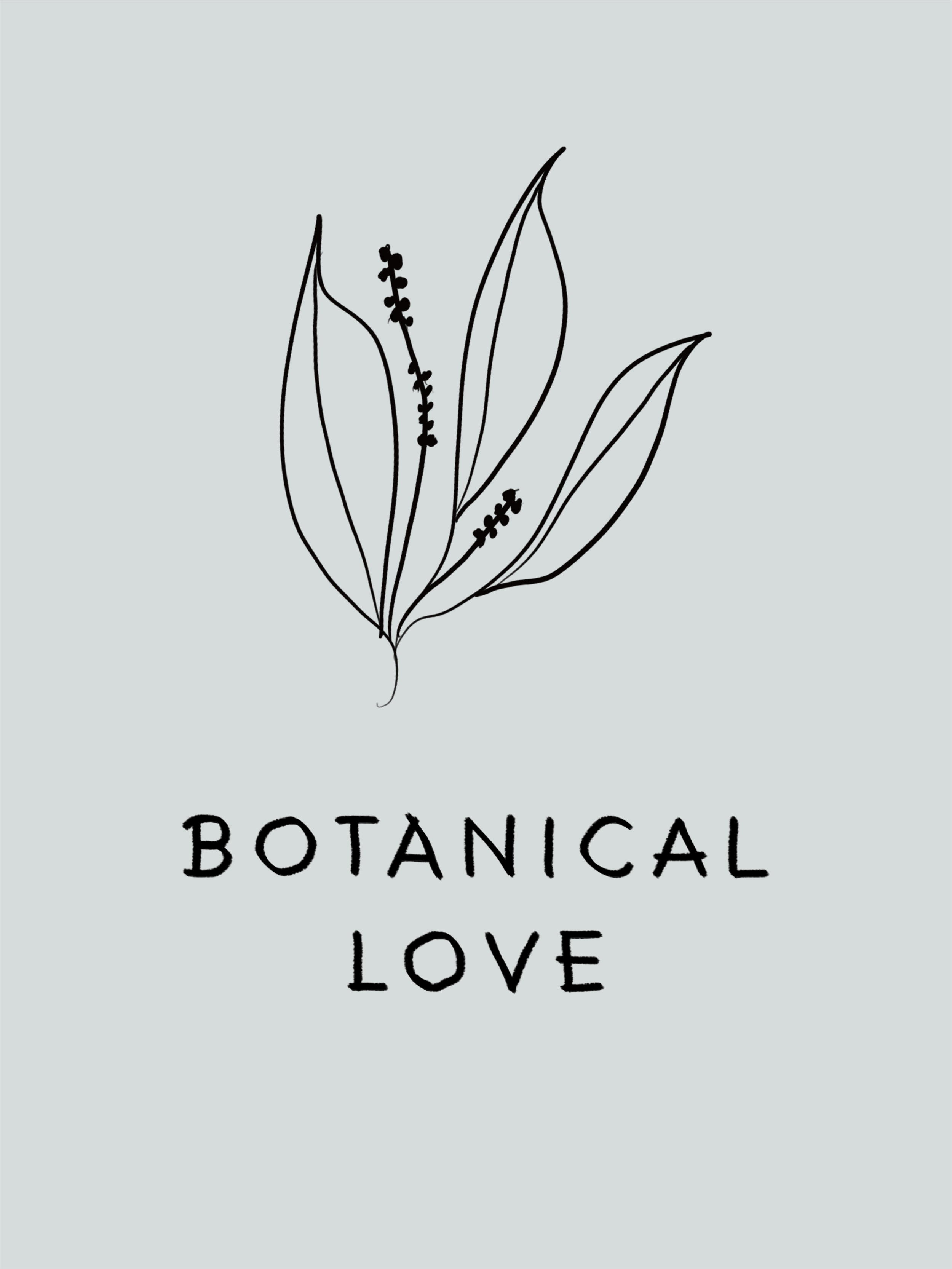 Botanical Love Illustration and Lettering // Phylleli Design Studio and Blog