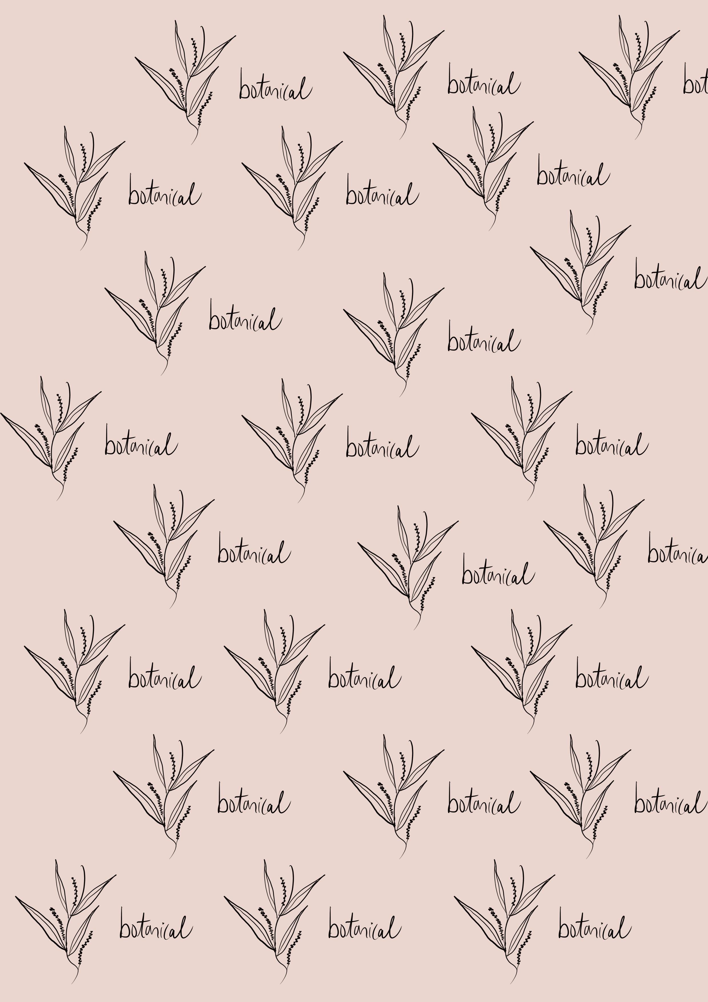 botanical illustration and lettering pattern // branding concept for an organic skincare line (phylleli design studio and blog)