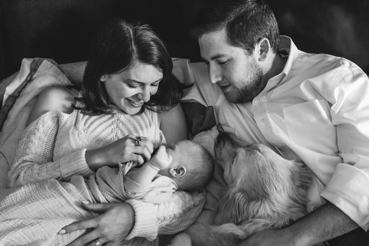 newborn session with dogs-laura barr photography