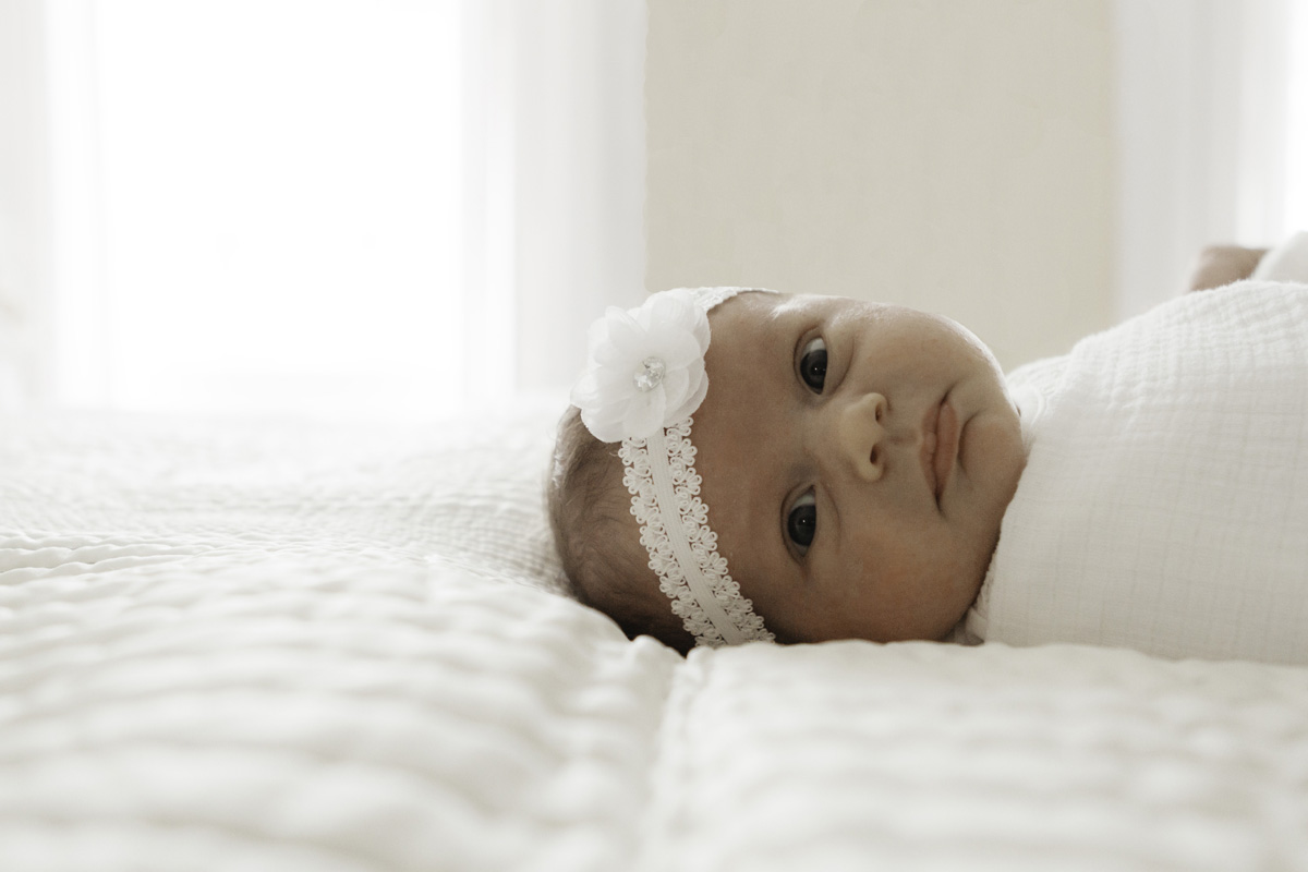 baby headband - newborn session baby e - laura barr photography