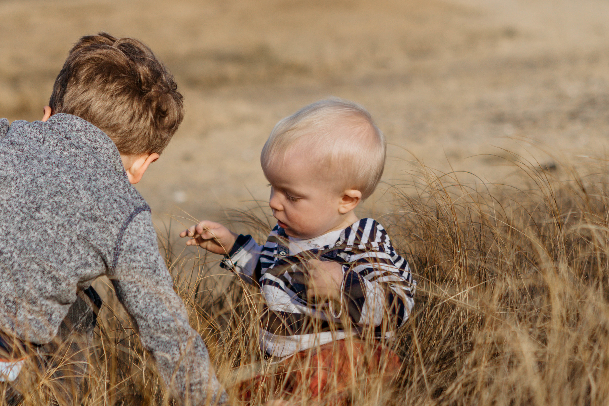 brothers at the beach - laura barr photography