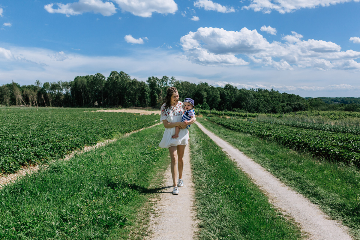 strawberry fields jones farm by laura barr photography