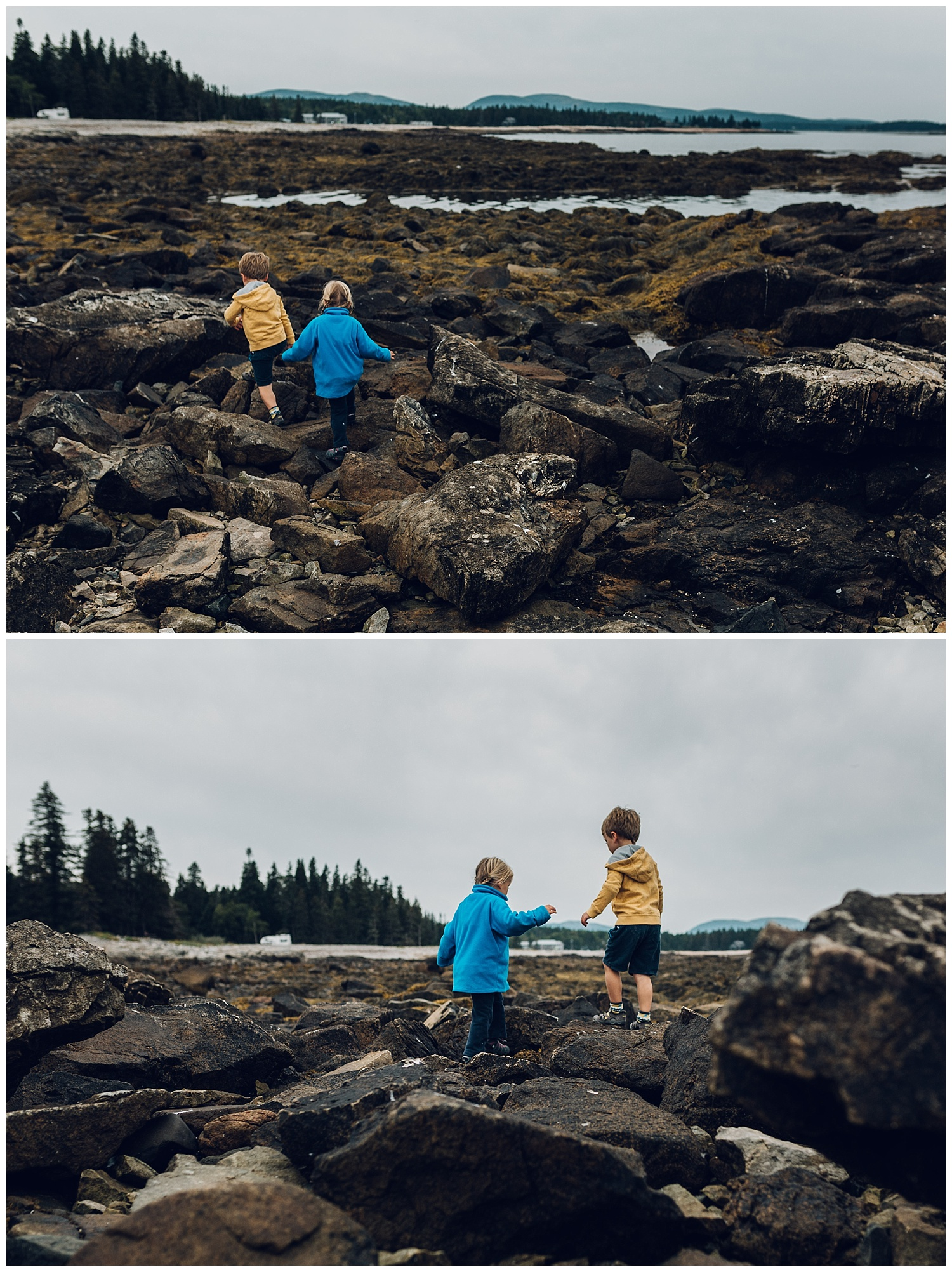 adventures in acadia by laura barr photography