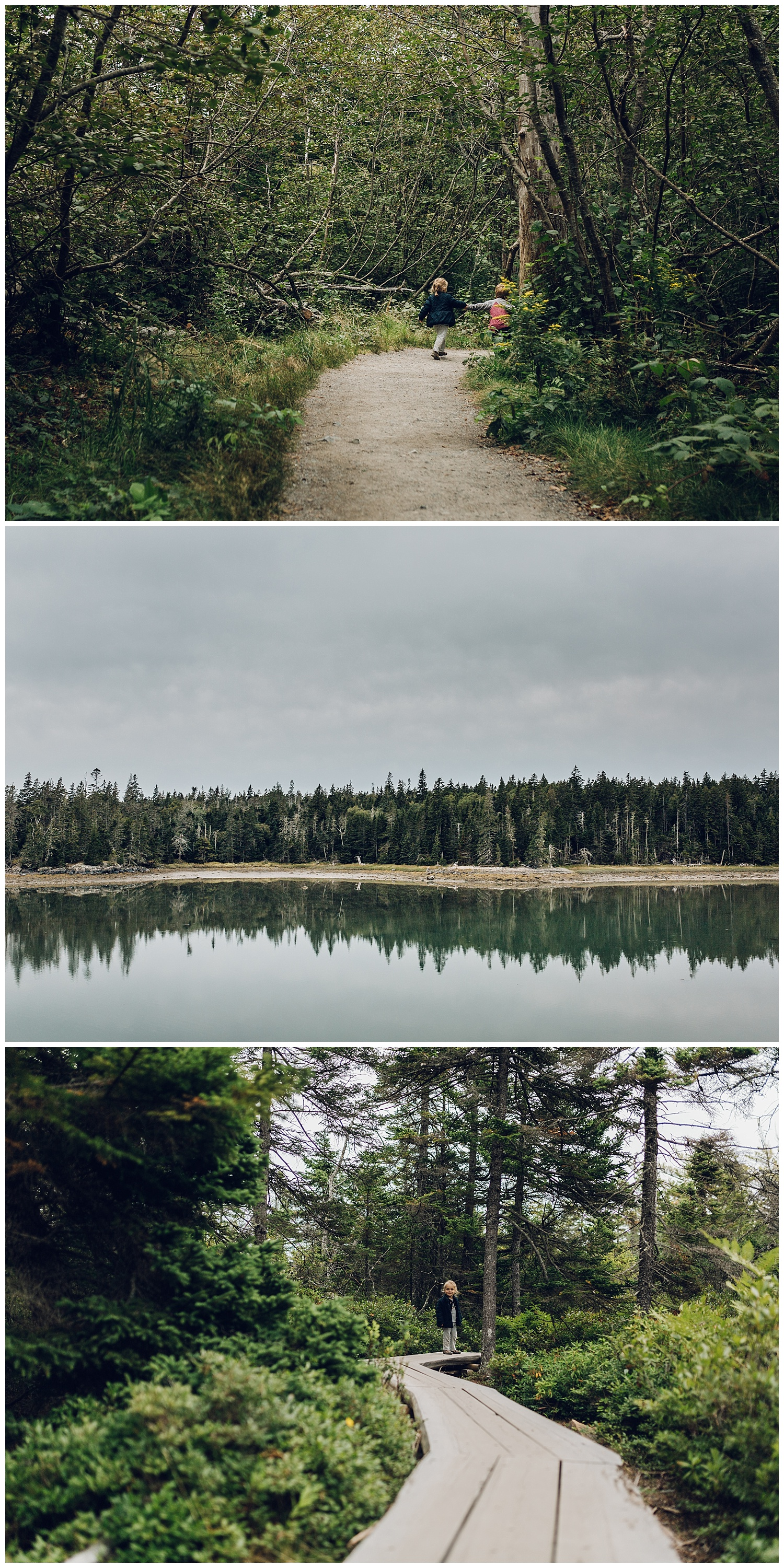 exploring the woods in maine by laura barr photography