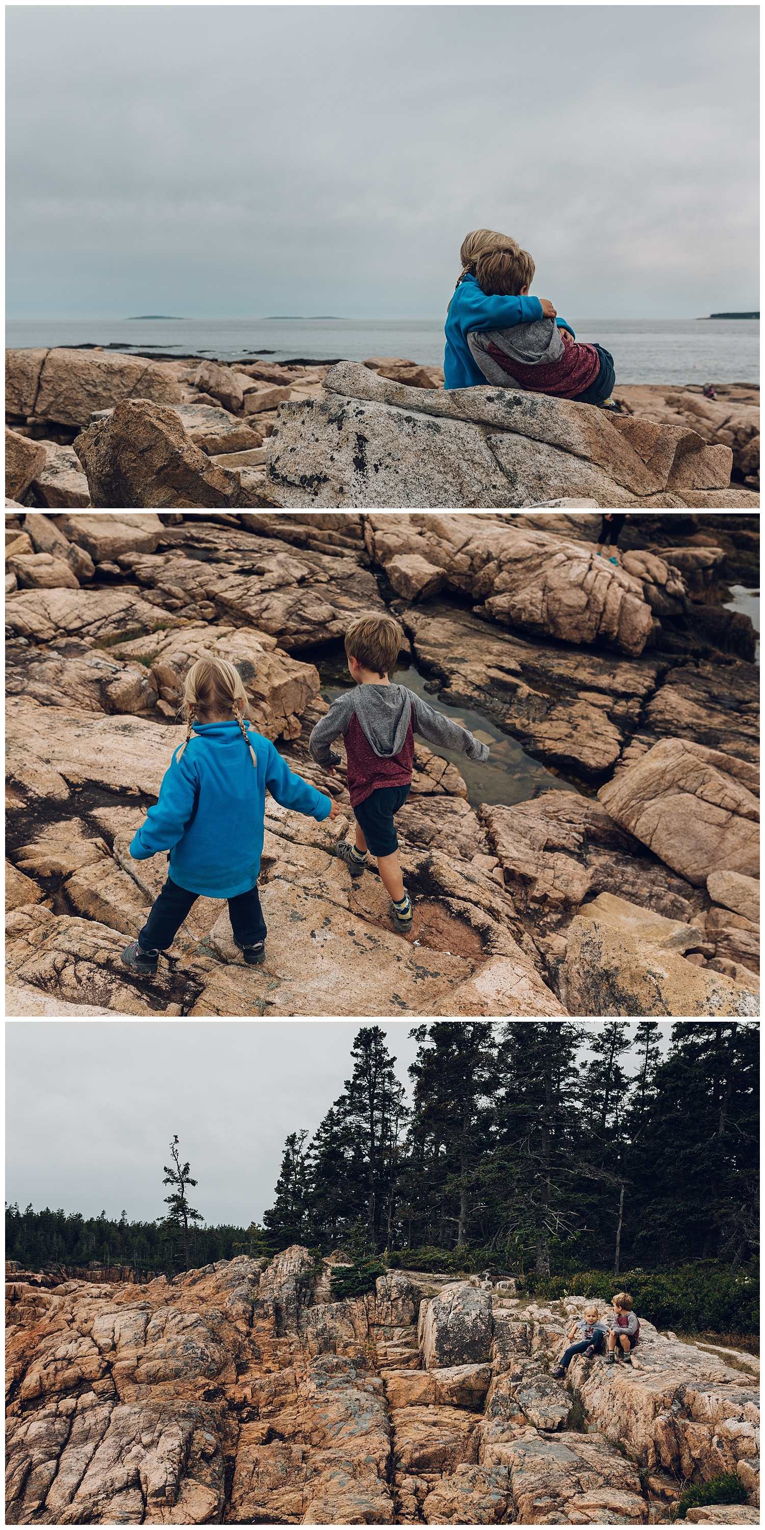 explorations in acadia national park by laura barr photography