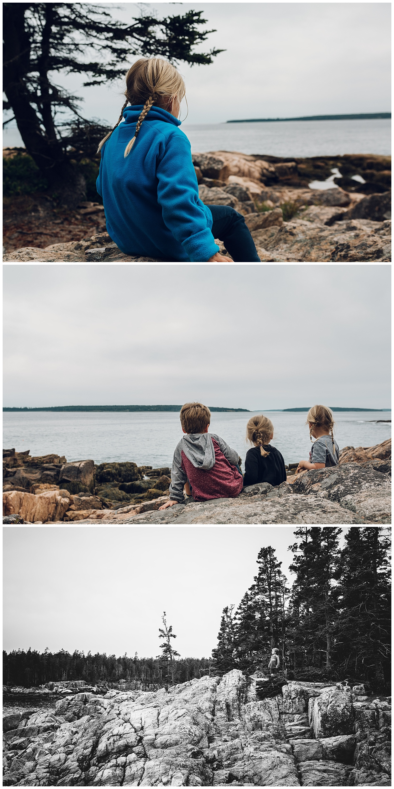 beautiful acadia by laura barr photography